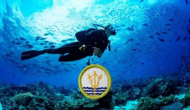 Oceanography merit badge guide